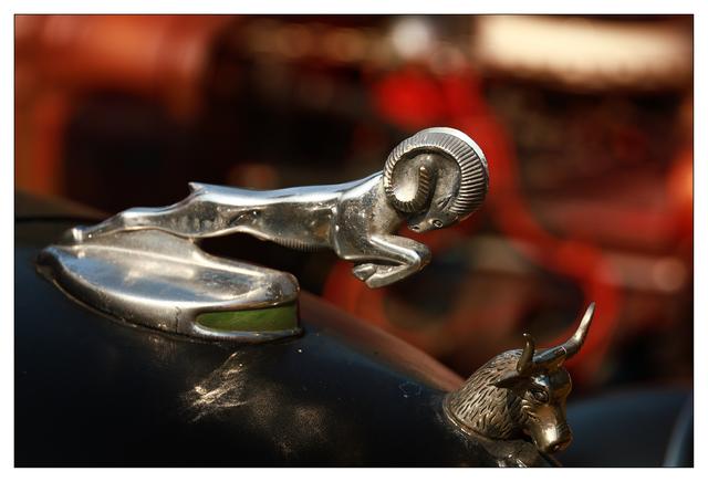 Hot Rods 2021 8 Automobile