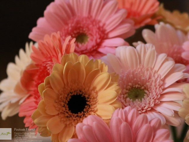 Buy Flowers College Station TX Florist in College Station, TX
