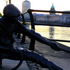 Ropeboy 1610 - Dublin