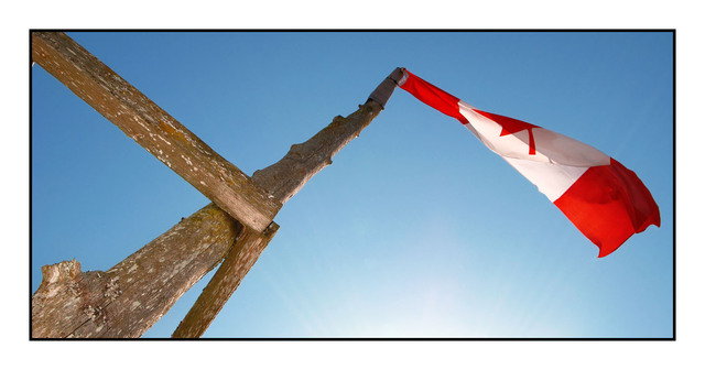 Driftwood flag Vancouver Island