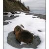 snow beach landscape - Landscapes