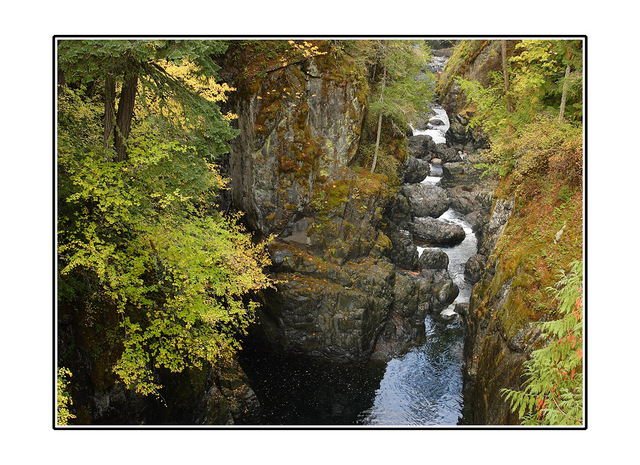 Englishman River Landscapes