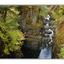 Englishman River - Landscapes