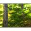 lerwick long exposure - Nature Images