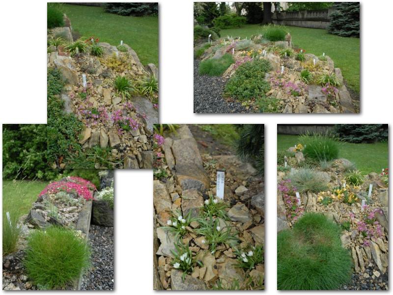 Rock' Gardener Club Prague 1711799