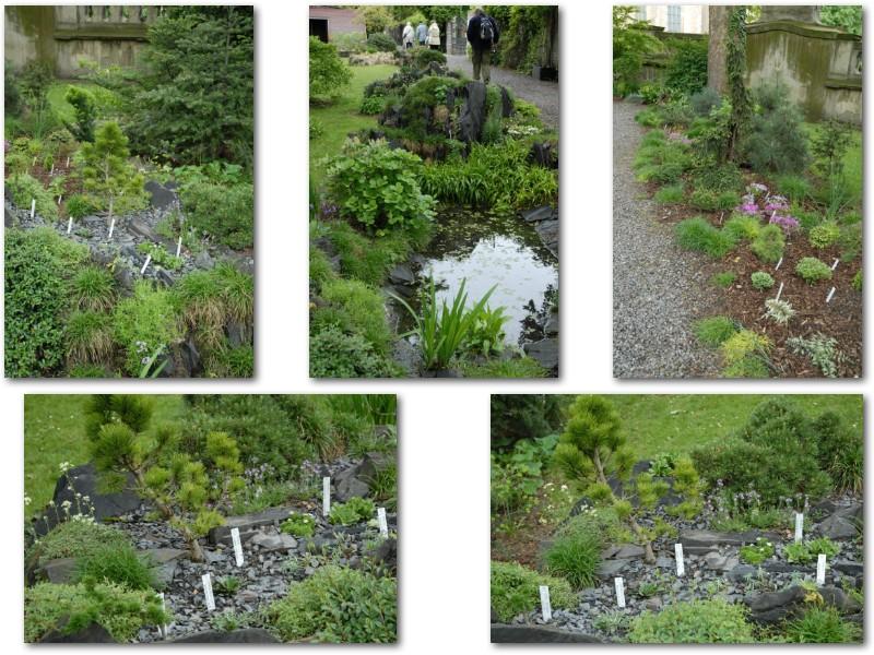 Rock' Gardener Club Prague 1711829