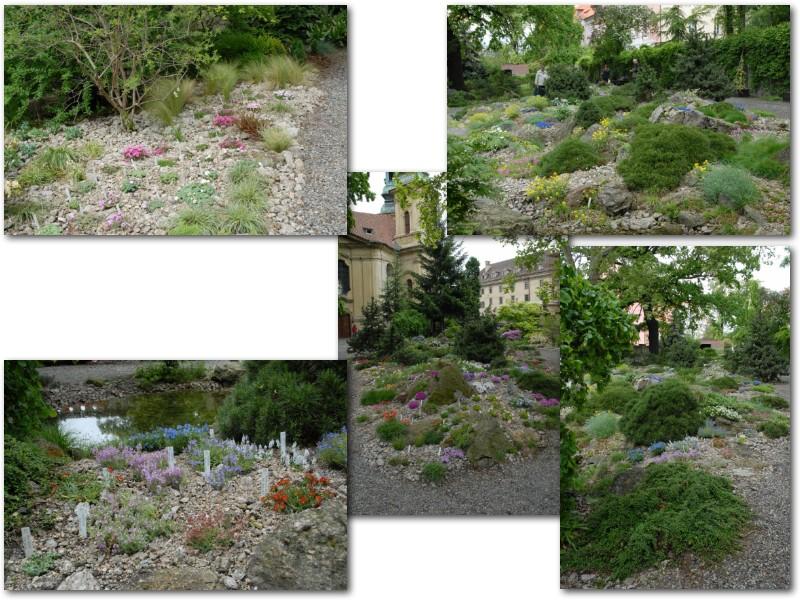 Rock' Gardener Club Prague 1711849