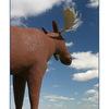 -moose jaw - Saskatchewan