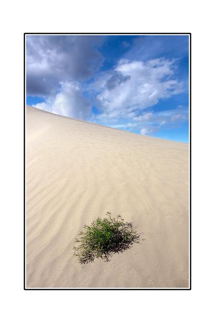 -Desert in Sask Saskatchewan