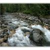 englishman river 2 - Landscapes