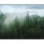 misty tsable - Landscapes