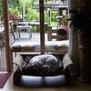 Cindy 29-05-09 - In huis 2009