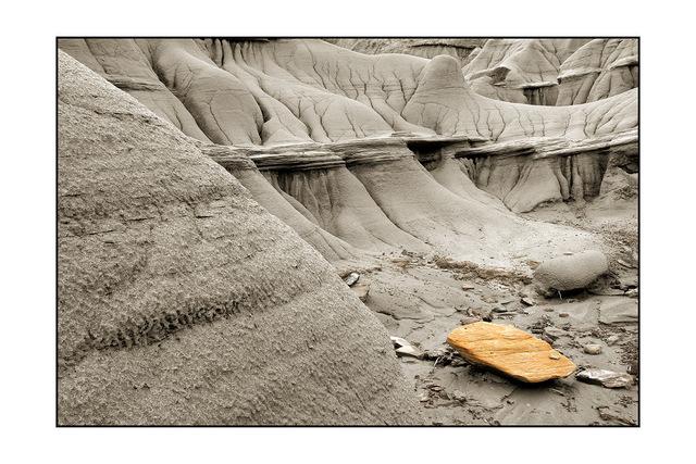 dinosuar park Nature Images