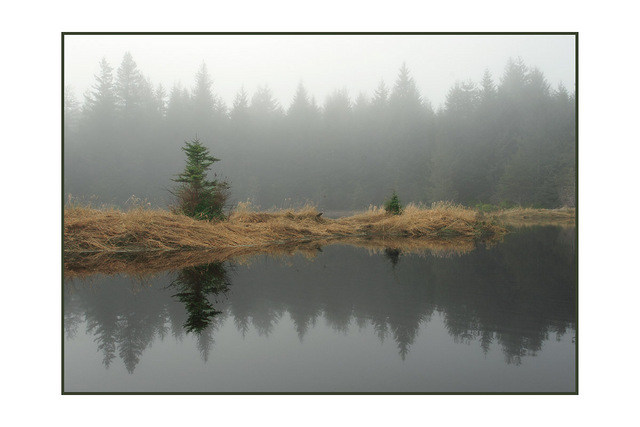 Foggy lake Nature Images