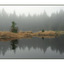 Foggy lake - Nature Images