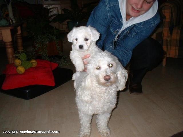 Kelly en Cindy en Whitney 02-07-02 In huis 2002