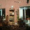 Tuin 25-09-03 08 - In de tuin 2003