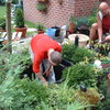 Vijverschoonmaak 24-08-03 19 - In de tuin 2003