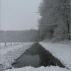 Sneeuw2 - Nature calls