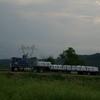 CIMG4850 - Trucks