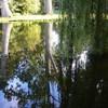 P1020493 - Vondelpark