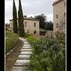 Serre di Rapolano 02fx - Italy photos
