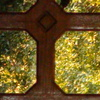 DSC01770 - from Sony camera