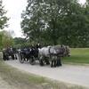 2007 09 23 119 - power Horse