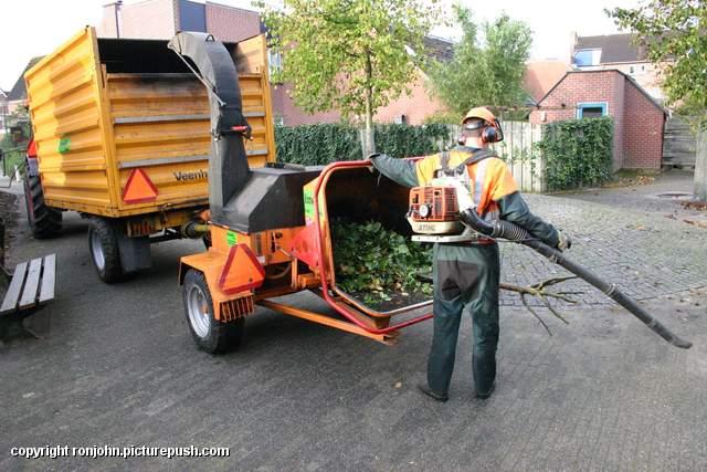 Eikenboom om 25-09-07 154 Eikenboom achtertuin om 25-09-07