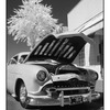 Lead Sled Infra - Infrared photography
