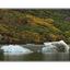 Ice in the Fall - Alaska and the Yukon