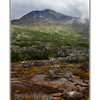 Yukon Landscape - Alaska and the Yukon