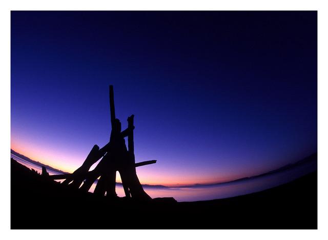 logs fisheye - 35mm photos