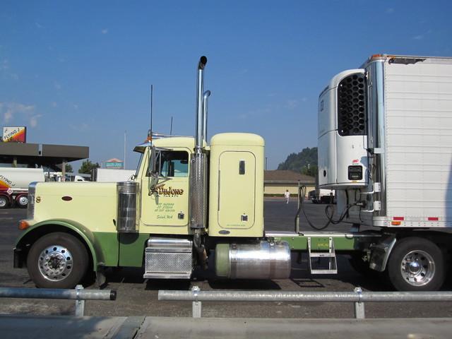 IMG 3023 Trucks