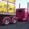 CIMG1541 - Trucks