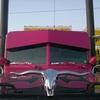 CIMG1533 - Trucks