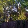 IMG 0696 - iPhonw