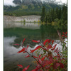 Jasper - Landscapes