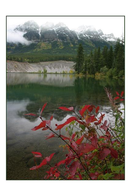 Jasper Landscapes