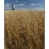 SK1 169 - Saskatchewan