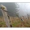 old fog fence - Nature Images
