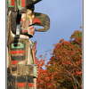 Fall color Totem - Vancouver Island
