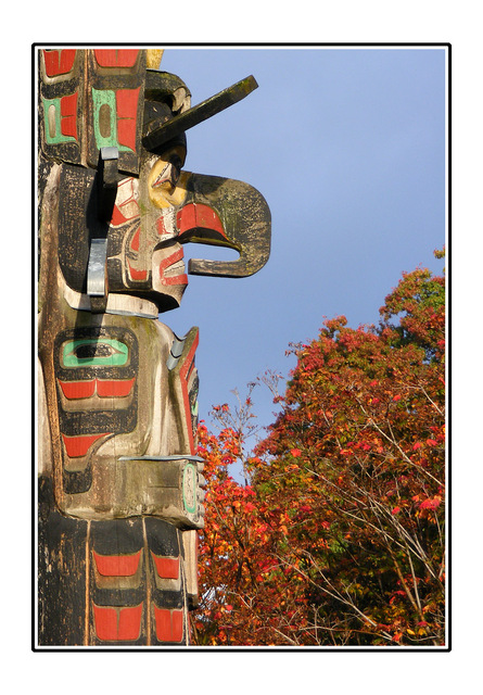 Fall color Totem Vancouver Island