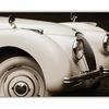 classic jag - Automobile