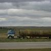 CIMG7999 - Trucks