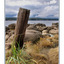 CRW 8423 - Nature Images