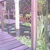 Tuin 17-10-07 04 - In de tuin 2007