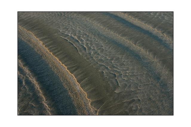 tofino 03 Nature Images