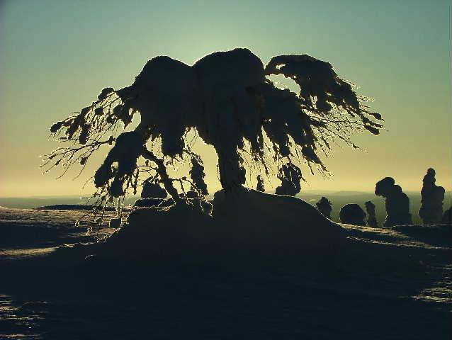 2005 0221Image0009 Winter in Salla