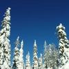 2005 0221Image0054 - Winter in Salla